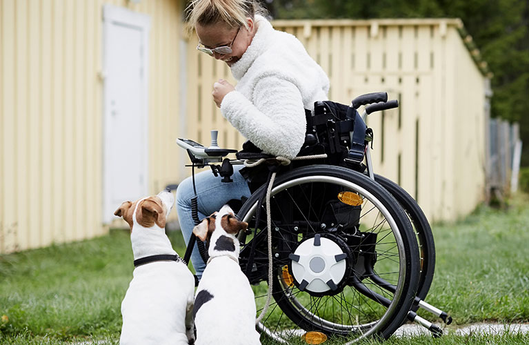 woman in a wheelchair with two dogs