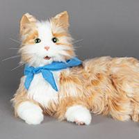 Wellness Kit Memory Kit B animatronic cat